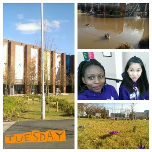 Green campus! Aston lake in spring, society purple hoodies